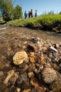Big Timber Creek, Lemhi River Tributary