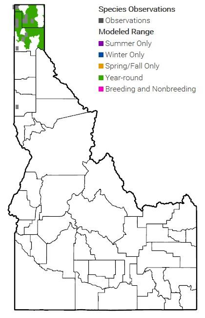 Caribou Range Map